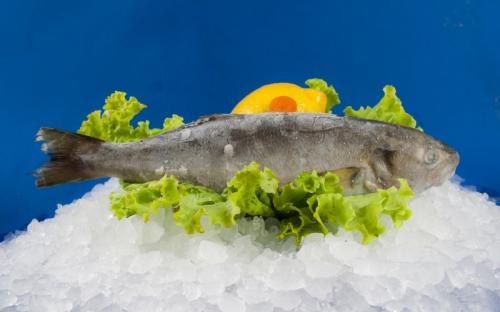 Замразена риба Лефер