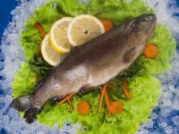 Замразена риба Пастърва чистена вакуум