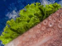 Замразена риба Октопод