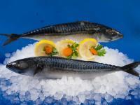 Замразена риба Скумрия 4 - 6 пакет